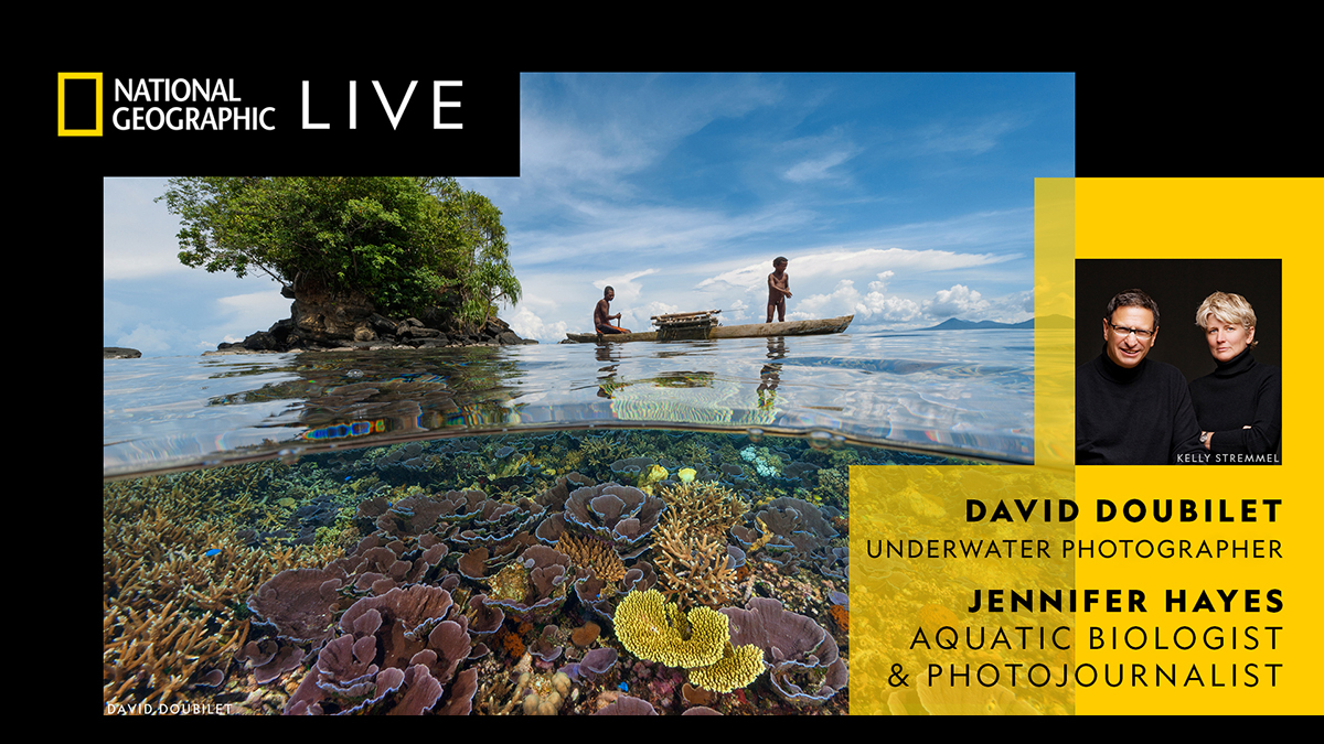 National Geographic Live! Coral Kingdoms and Empires of Ice with David Doubilet, Underwater Photographer and Jennifer Hays, Aquatic Biologist and Photojournalist