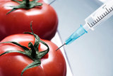 Pro-GMO? Or Pro-Right to Know?
