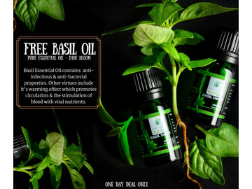 Wall_basil_essential_oil__beauty_by_carisa