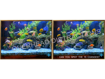 Wall_aquarium_watermark