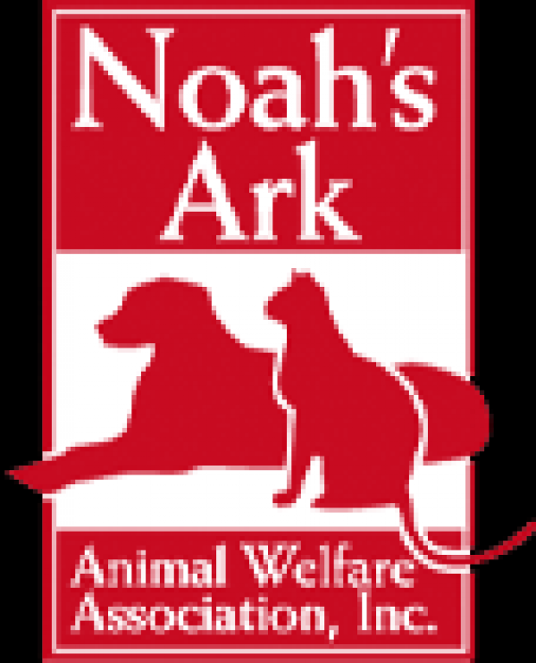 Noah's Ark is a not-for-profit organization providing shelter and medical care for homeless cats and dogs. Our goal is to find lifetime homes where these animals will be cared for and loved.