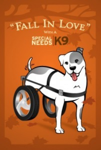 Special Needs K9, A non-profit organization dedicated to the rescue of dogs and other animals with physical, medical and other special needs. Get involved!
