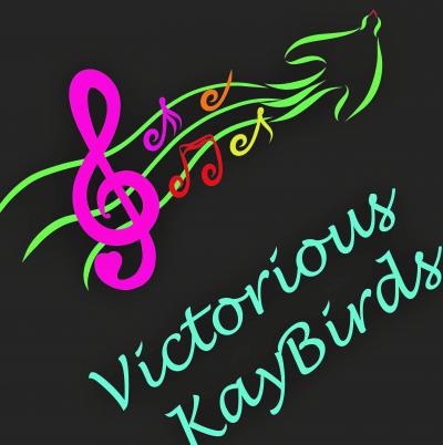 VKB Logo Photo smaller