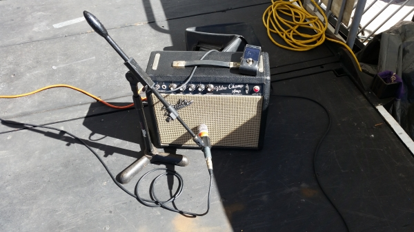 1964 Vibro Champ live at the Johns Pass Seafood Festival