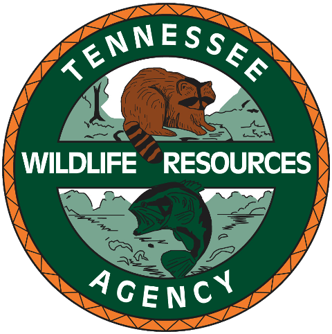 Free fishing day set for Saturday in Tennessee