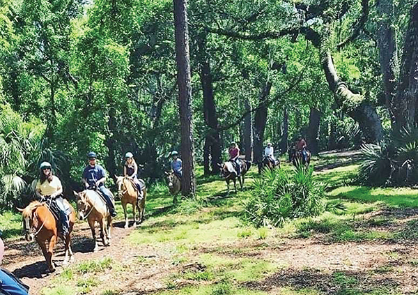 Visitors to Lawton Stables recently enjoyed the happy trails through the Sea Pines Forest Preserve. COURTESY LAWTON STABLES