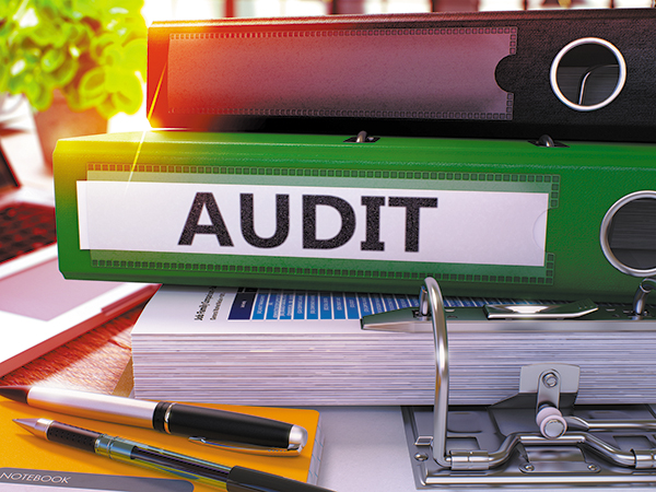 Opinion: Beware the ZPIC Audit