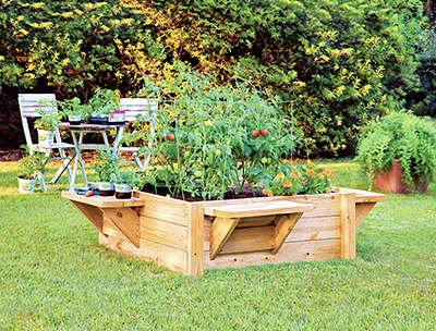 Make Backyard Gardening Easier With A Raised Bed The Bluffton Sun