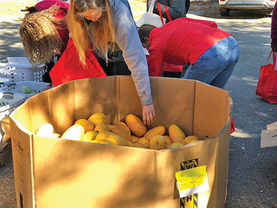 Shoppers help themselves to squash, beets, onion, lettuces and other produce at a previous Fresh Xpress free event at Bluffton Self Help. The next event will be held Oct. 30. COURTESY BLUFFTON SELF HELP