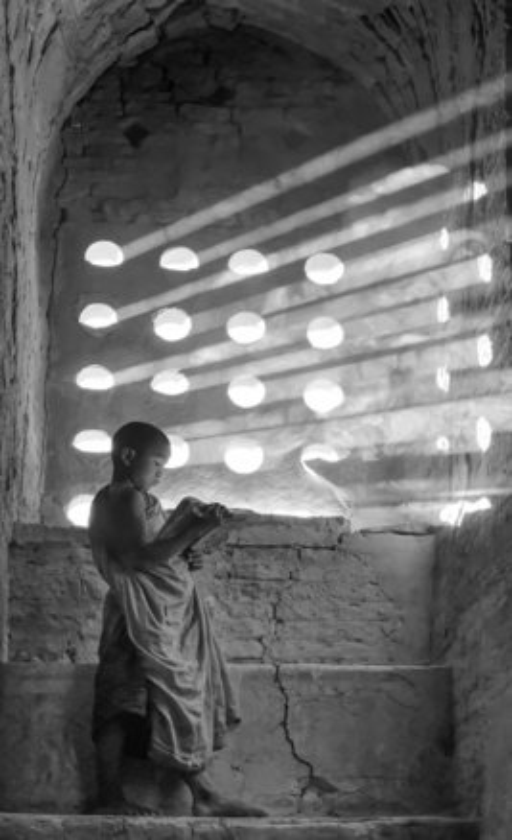 Monk studying  bagan  burm copy