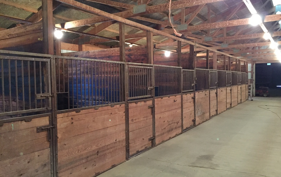 7+ Acre Horse Property Auction
