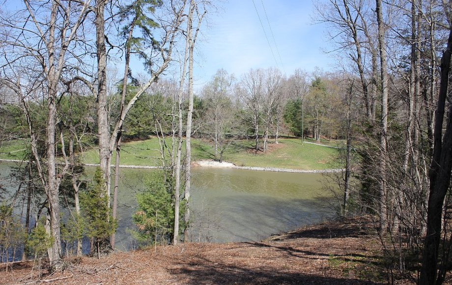 WATERFRONT: 20 Acres on Smith Mountain Lake