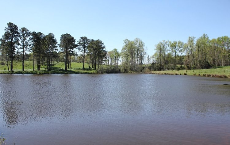 341 Acre Farm in 5 Tracts