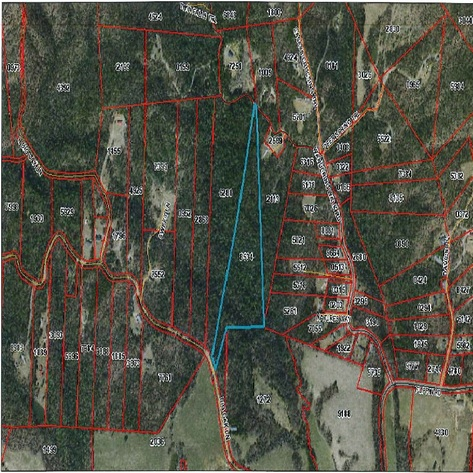 Wooded Timber Tract