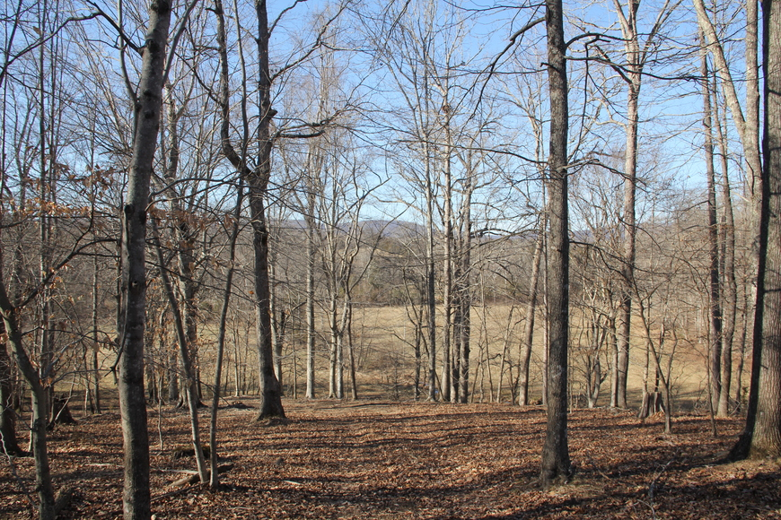 316 Acres near Charlottesville VA