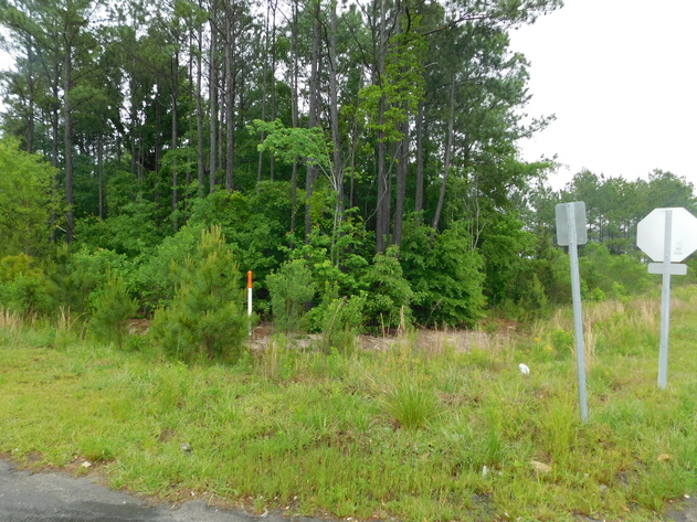 Commercial Development Land in Biscoe, NC - Online Only