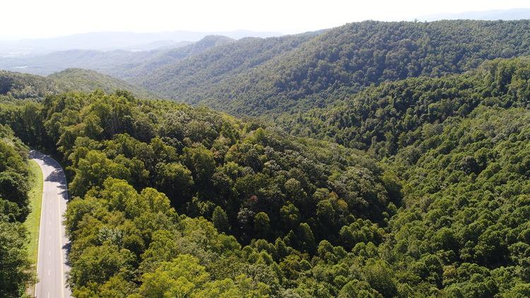 68 Acres on Hwy 21 in Alleghany & Wilkes Counties, NC