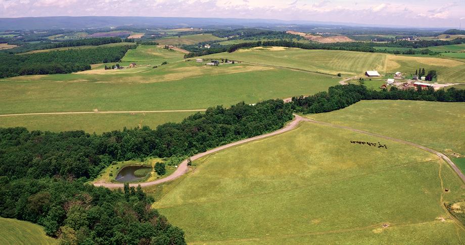 1015 +/- Acre Land Auction | ErReR Hill Farms