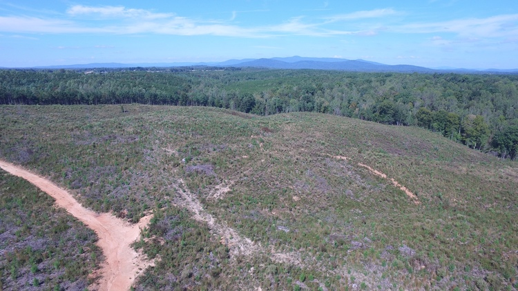 52.67 Acres - Via's Orchard Road - Patrick County, VA - Online Only