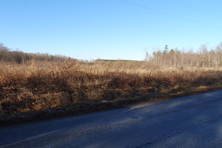 26 +/- Acres of Raw Land in Spotsylvania County, VA Selling at or Above $25,000!!  ONLINE BIDDING ONLY