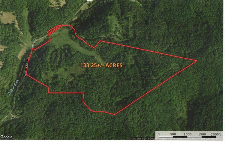 133 +/- Acre Lewis County Land Auction