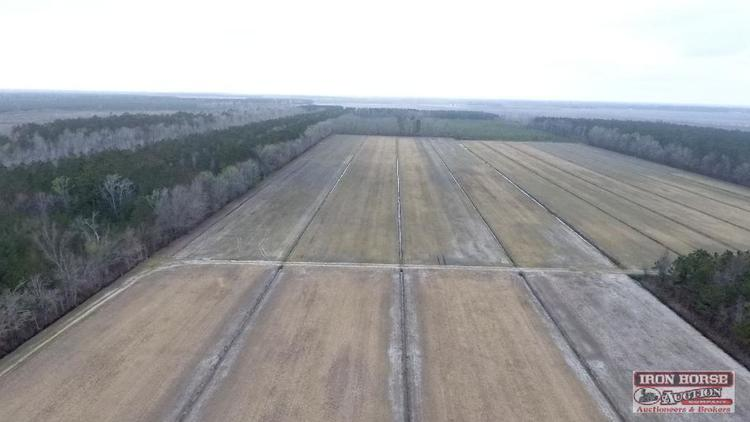 185 +/- Acres Cropland and Timber - Oriental NC