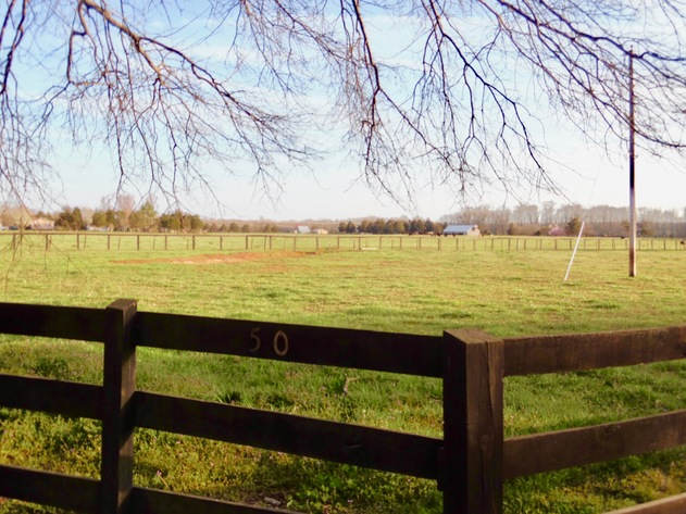 69.5 +/- Acres of Beautiful Land w/Barn, Fencing, Pond & Creek in Culpeper County, VA