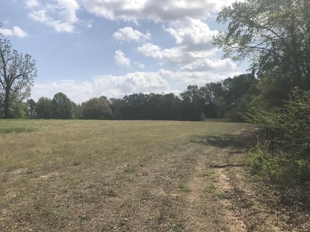 Rental Homes and Farm Acreage - Harnett County
