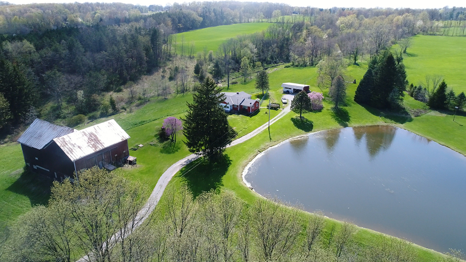Absolute 40+/- Acre Auction – Ashland County Land Auction