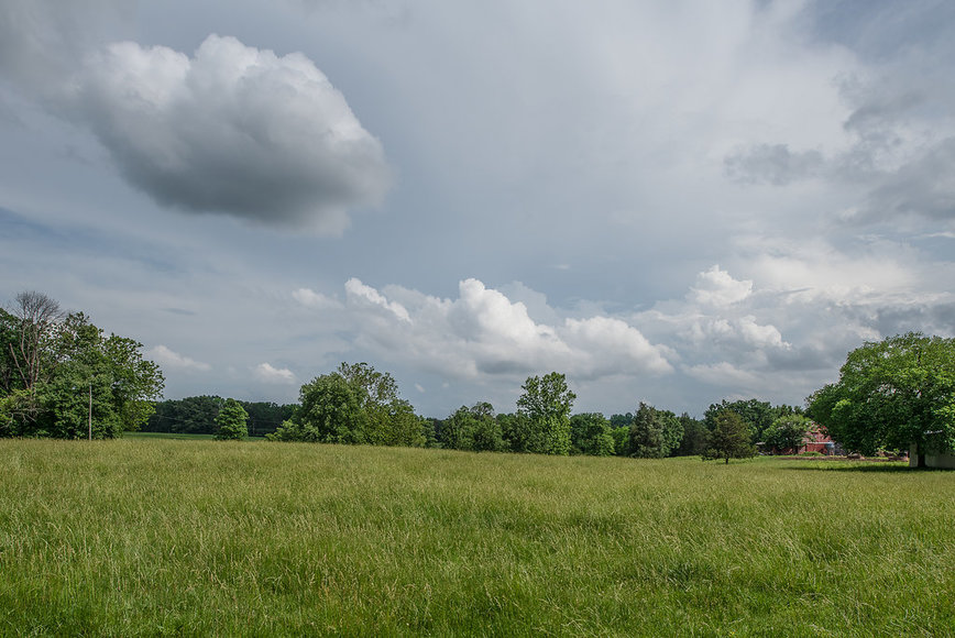Featured Image for 55 +/- Acres Zoned A-1 w/3 BR Custom Brick Home, Fenced Pasture, Outbuildings, 280' +/- of Road Frontage & Deeded Easement off of Rt. 17 in Stafford County, VA--Selling to the Highest Bidder!!