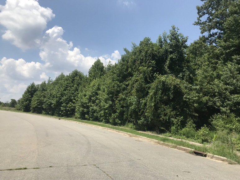 Commercial Lots & Acreage Tracts In Kernersville, NC
