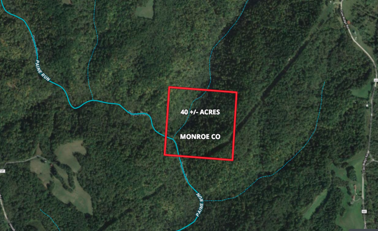 40  Acre  Vacant  Land  Monroe  Co.  OH.