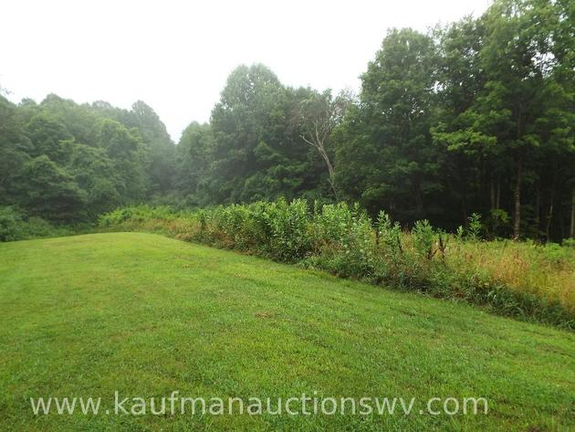 ABSOLUTE ONLINE ONLY WETZEL CO. WV. LAND AUCTION