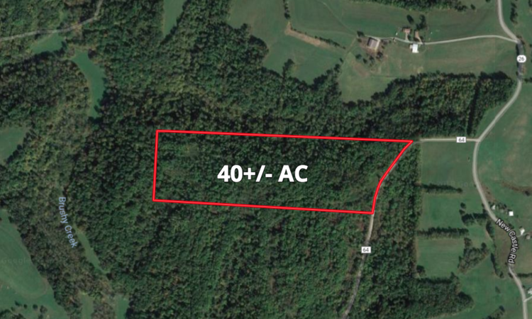 Belmont Co Land Auction
