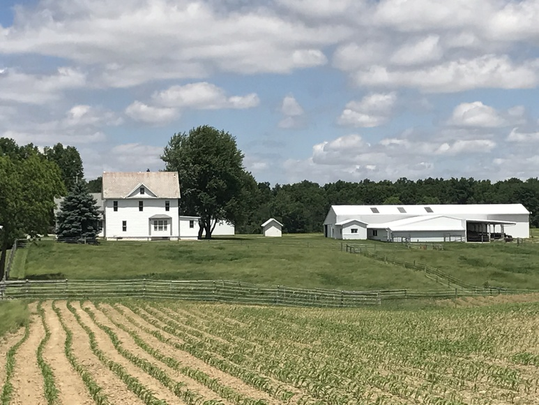 ASHLAND COUNTY 165 ACRE ABSOLUTE FARM AUCTION
