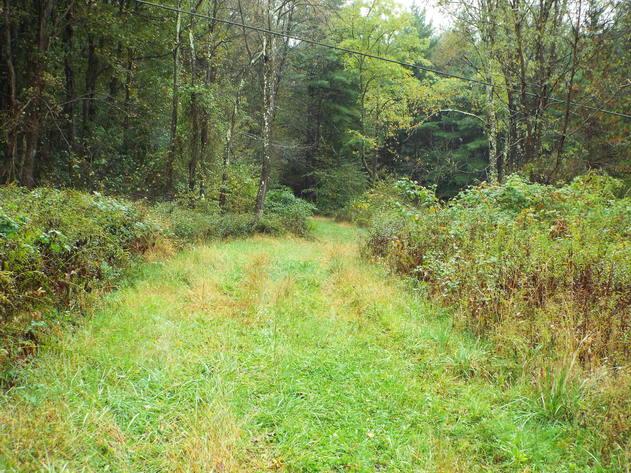 Absolute 128 Acre Hazelton Exit Land Auction