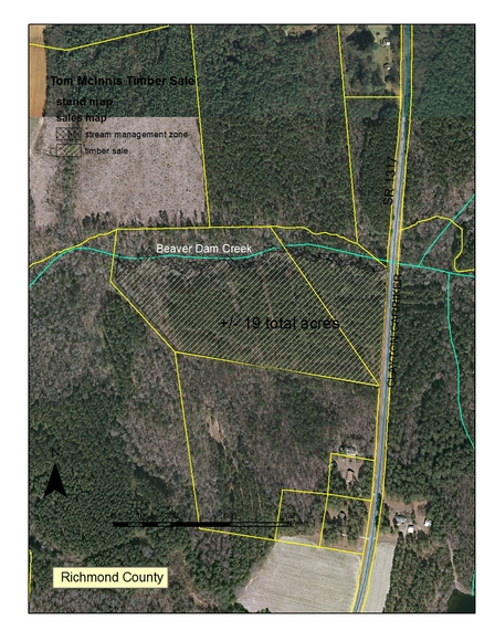 Invitation to Bid on 19+/- Acres of Standing Timber in Richmond County, NC