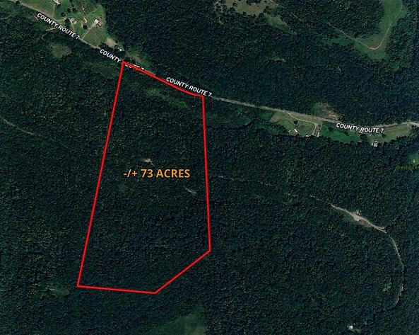 Absolute Online Only Brushy Fork Recreational Land Auction