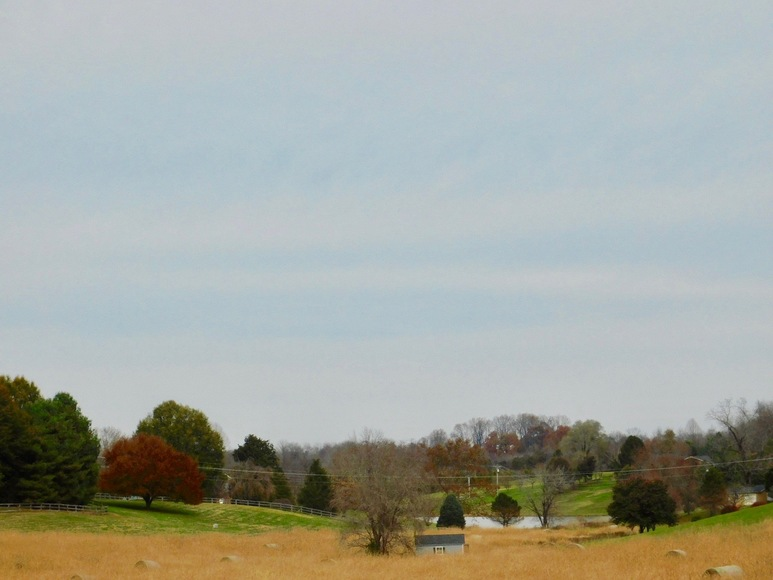 Featured Image for Beautiful 3.68 +/- Acre Building Lot in Culpeper County, VA