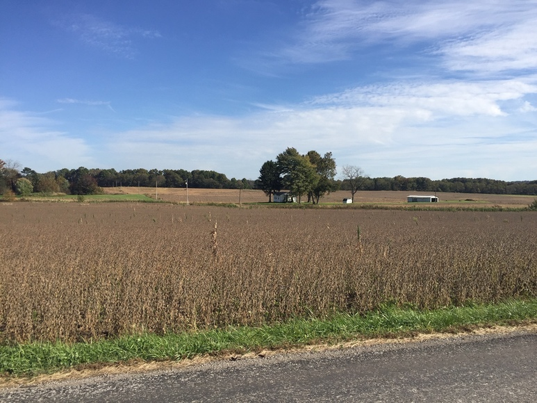 APPLE CREEK – WAYNE COUNTY ABSOLUTE LAND AUCTION