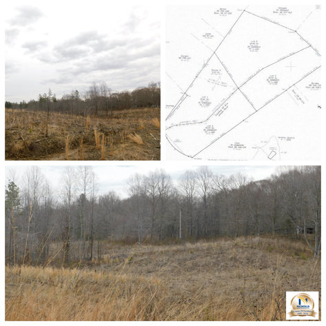 Image for 96 +/- Acres w/4 Perc Sites in Orange County, VA--Selling to the Highest Bidder!!