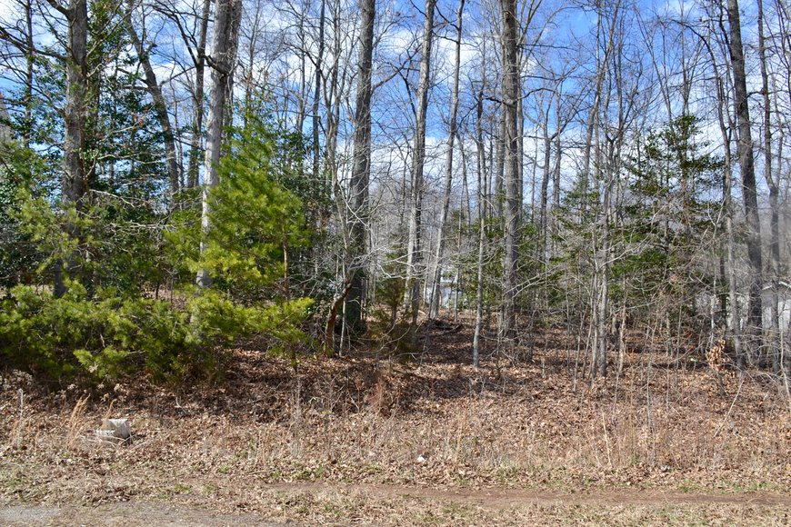 Featured Image for 5 Lots in Spring Creek Subdivision on Public Water & Sewer--Spotsylvania County, VA