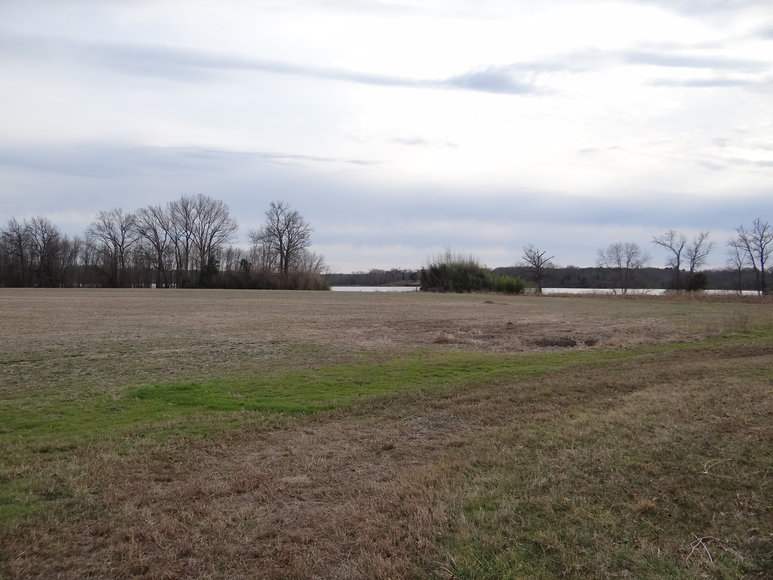 Featured Image for 2 Gorgeous Rappahannock River Front Lots of 13 & 18 Acres-- King George County, VA