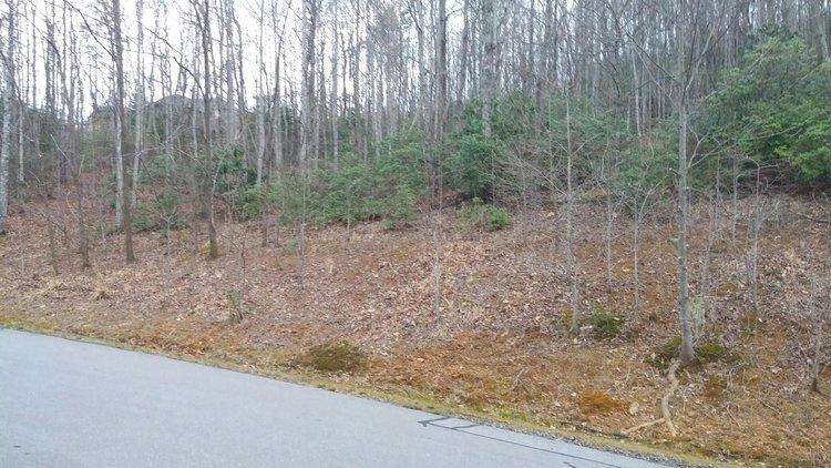 Lot in Catawba Falls Preserve Subdivision - Black Mountain, NC