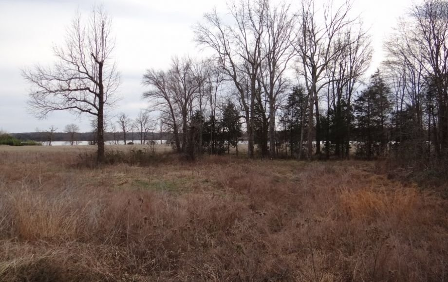 2 GORGEOUS 13 & 18 ACRE RAPPAHANNOCK RIVER FRONT LOTS in KING GEORGE COUNTY, VA