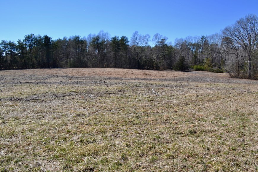 3 BR/2 BA HOME on 31 +/- ACRES WELL LOCATED ON RIVER ROAD—SPOTSYLVANIA COUNTY, VA