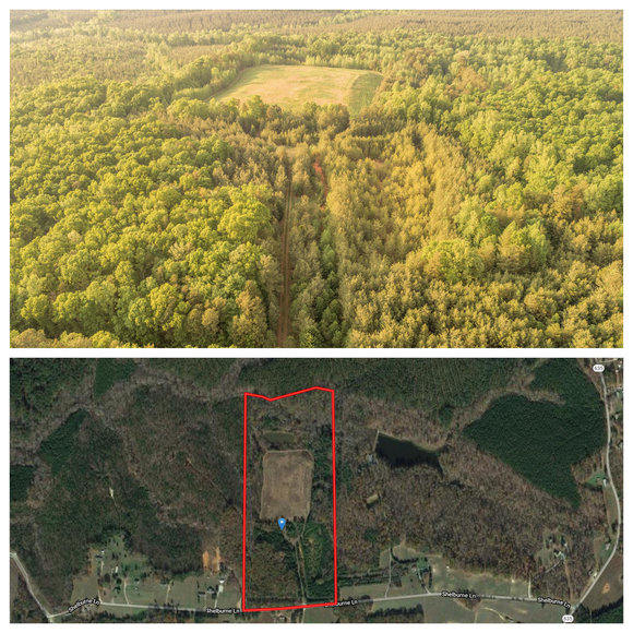 Featured Image for 49.7 +/- Acres of Timber Land in Lunenburg County, VA--Selling to the Highest Bidder!!