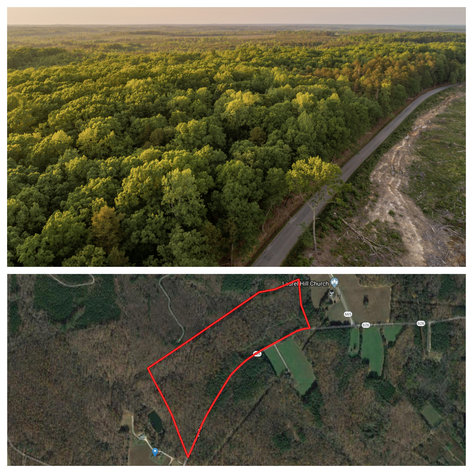 Image for 46.5 +/- Acres of Timber Land in Lunenburg County, VA