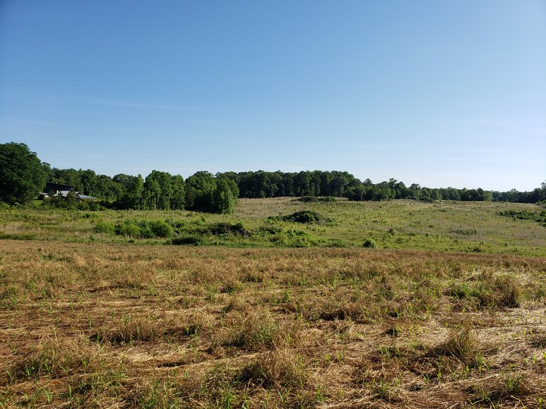 37+/- Acres Located on Highway 705 in Moore County, NC