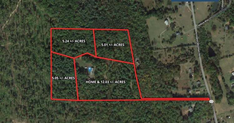 3 Wooded 5 Acre Building Lots w/4 Bedroom Perk Sites in Madison County, VA